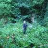 Спуск в пещеру Партизанскую